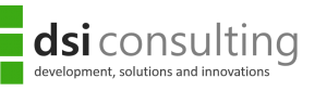 dsi consulting GmbH